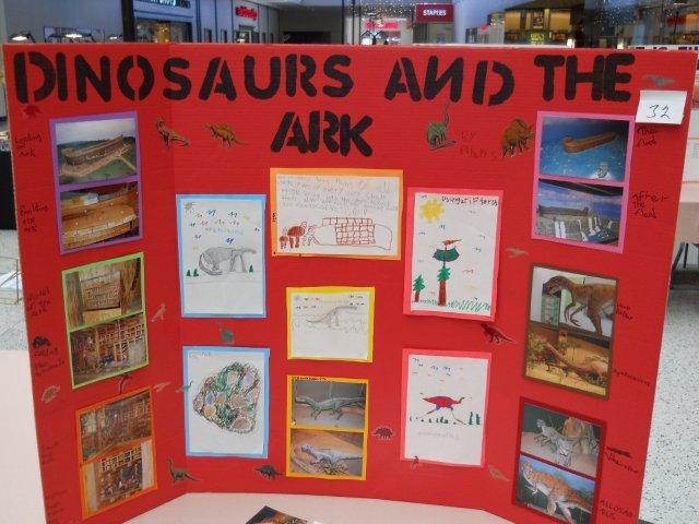Good Sae Project Examples For Kids