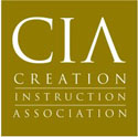 Creation Instruction Association